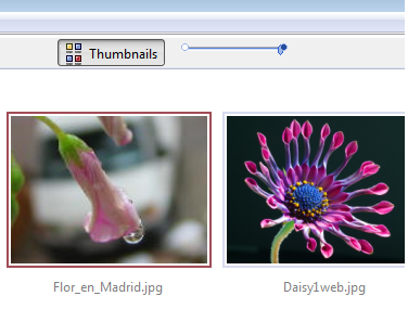 Fast Thumbnail View with Slider